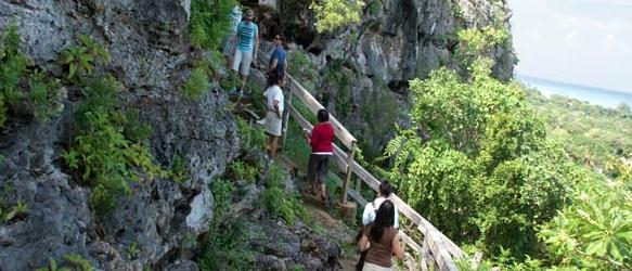 Cayman Islands Mastic Trail