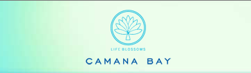 Upcoming Summer Camps at Camana Bay