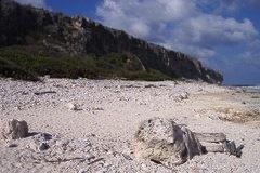 Best Cayman Beaches